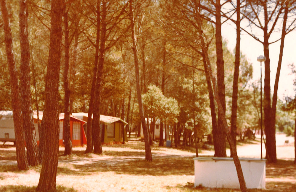 The beginnings of Esponellà Campsite